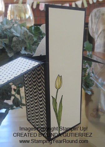 Pop-up box card back
